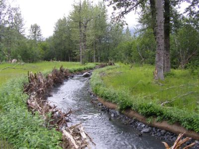 Japp Creek Realignment